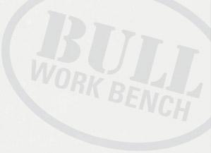 Bull watermark logo